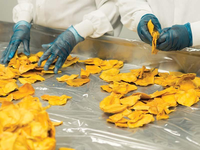 Food packaging plant workers